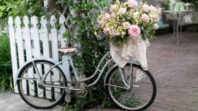 """Image of a Bicycle """"Stella"""""""