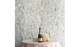Image of a 03 - Flower Wall White 10'x8'