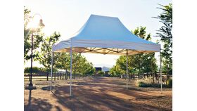 Image of a 10X15 Canopy (V3)