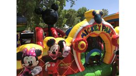 Image of a Mickey Park