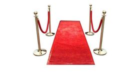 Image of a Red Velvet Stanchion Rope