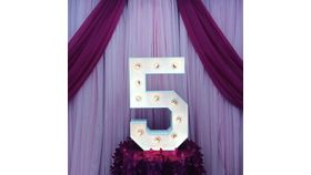 """Image of a #5 MARQUEE NUMBER LED 28"""""""