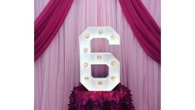 """Image of a #6 MARQUEE NUMBER LED 28"""""""