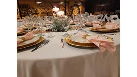 "Image of a Blush 20"" Linen Napkins & Bling Gold Napkin Wrap"