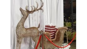 Image of a Gold Glitter Lighted Reindeer Sled