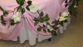 Image of a Cake Table Display, Gift Display/Entry Display or Candy Table Display