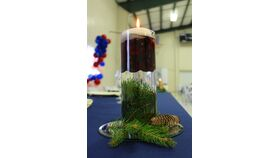 """12"""" Clear Glass Cylinder Vase w/ Floating Candle w/Live Evergreen & Cranberries/Ornaments image"""