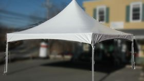 Image of a 20 x 20 Century Frame Tent TOP only