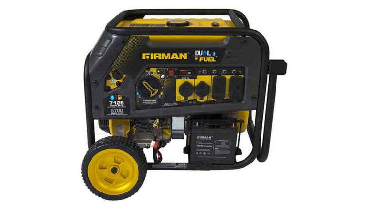 Picture of a 10,000W Gas Generator