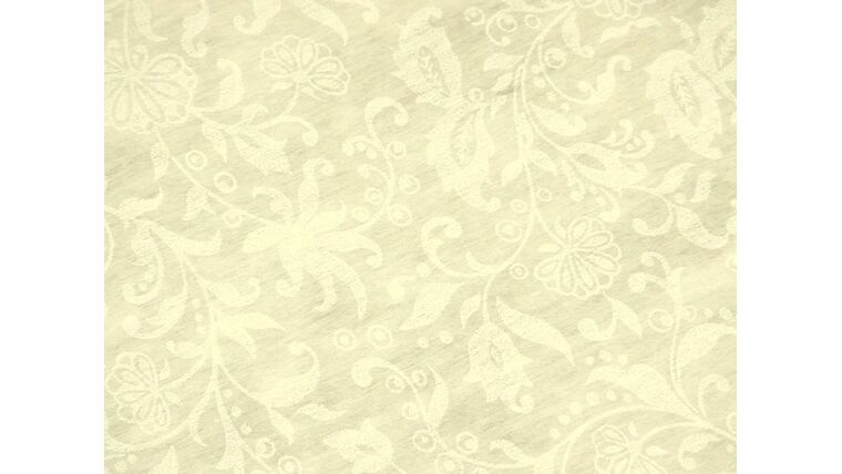 Picture of a Aisle Runner - Ivory 100 foot (disposable)