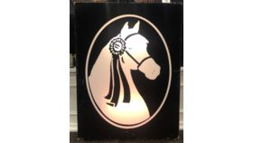 Image of a Morgan Horse Owned-Light Box