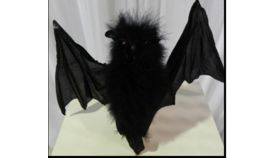 Image of a Bat-Fuzzy Body