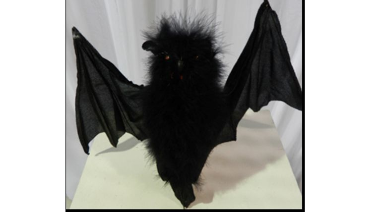 Picture of a Bat-Fuzzy Body