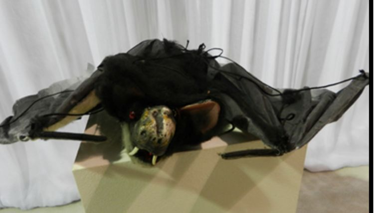 Picture of a Bat-Furry