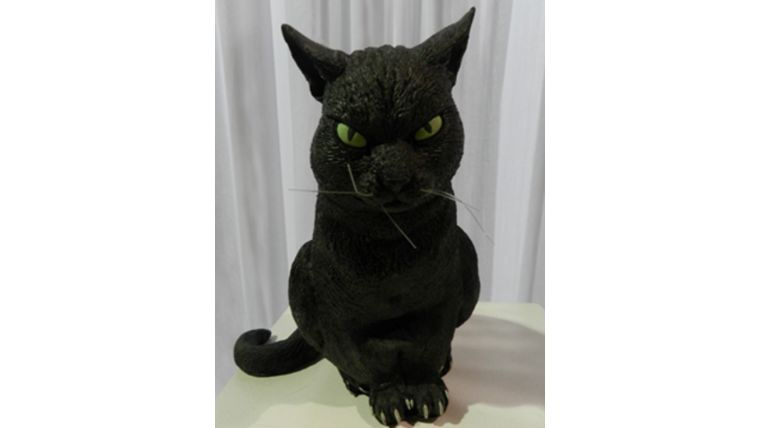 Picture of a Cat-Rubber, Black, Sitting