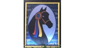 Image of a Morgan Horse Owned-Giant Screen