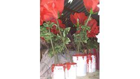 Image of a Faux Roses-In Buckets