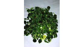 Image of a Vase Filler-Bead Garland-Lime Green Disk Tub