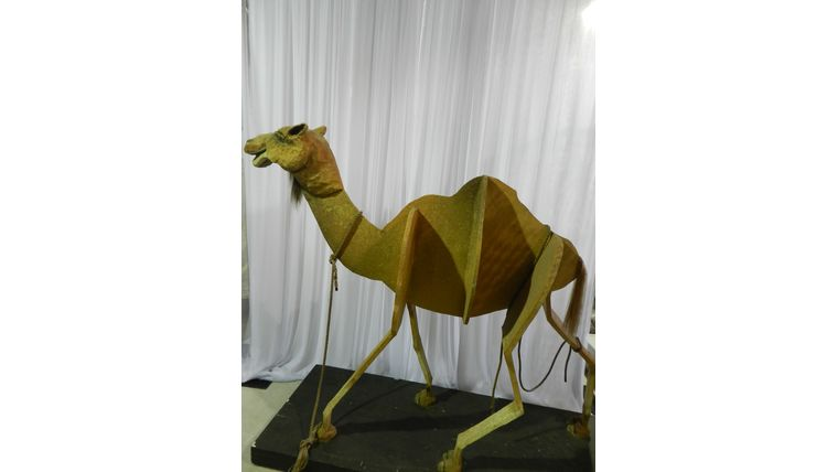 Picture of a Camel on Wheels