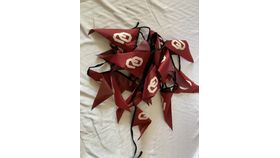 Image of a Pennant-OU Football-27'