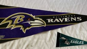 Image of a Pennant-NFL-8""