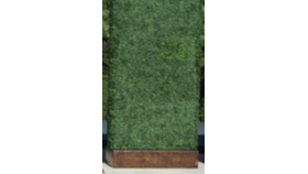 Image of a Base-Boxwood-Planter
