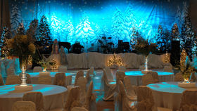 Image of a Backdrop-Winter Wonderland Canvas
