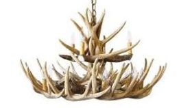 Image of a Chandelier-Antler