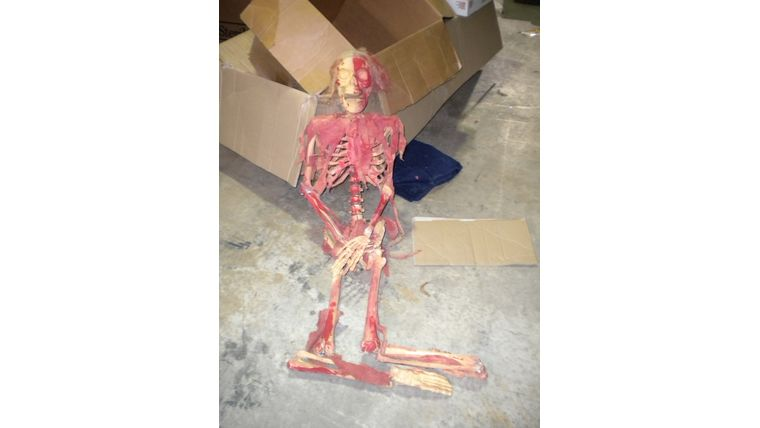 Picture of a Bloody Skeleton