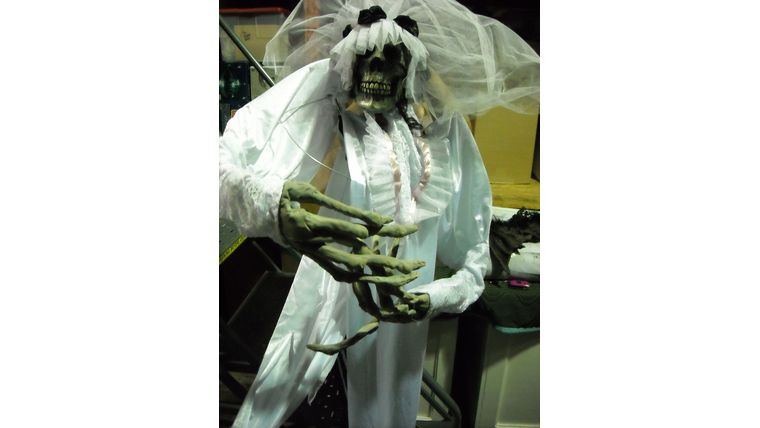 Picture of a Dead Bride