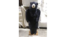 Image of a Bear-Standing-4ft 8in