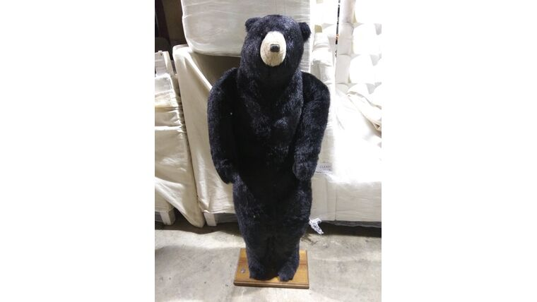 Picture of a Bear-Standing-4ft 8in