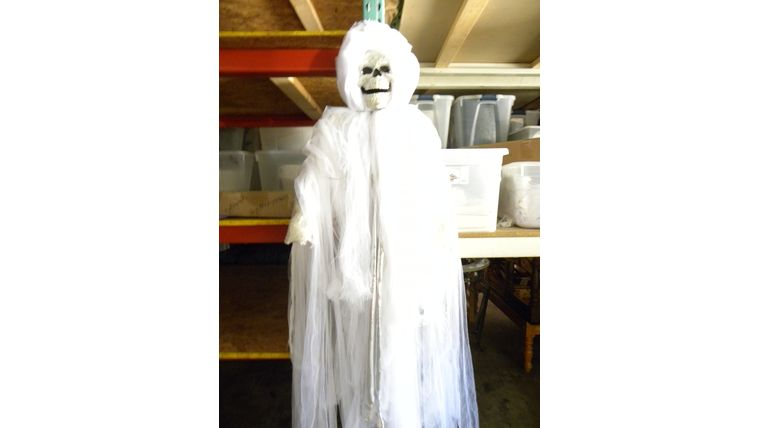 Picture of a Crystal Skull- Ghost Lady