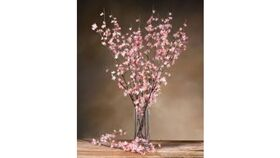 Image of a Branches-Cherry Blossom-Pink