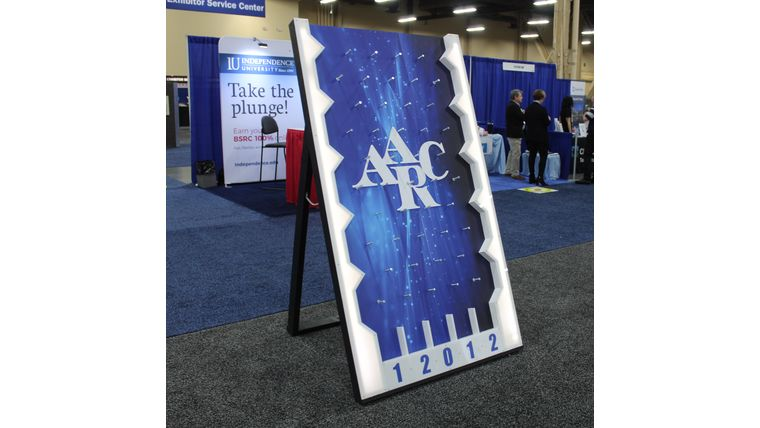 Picture of a Giant Plinko game with Branding and LED Lights, 4x6