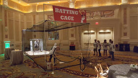 Image of a Batting Cage