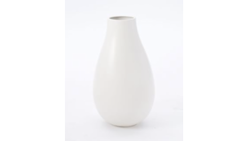 Image of a Ceramic Vase