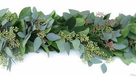 Image of a 6ft greenery garland (permanent floral)