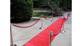 Image of a Stanchion Ropes -  5' length red velour