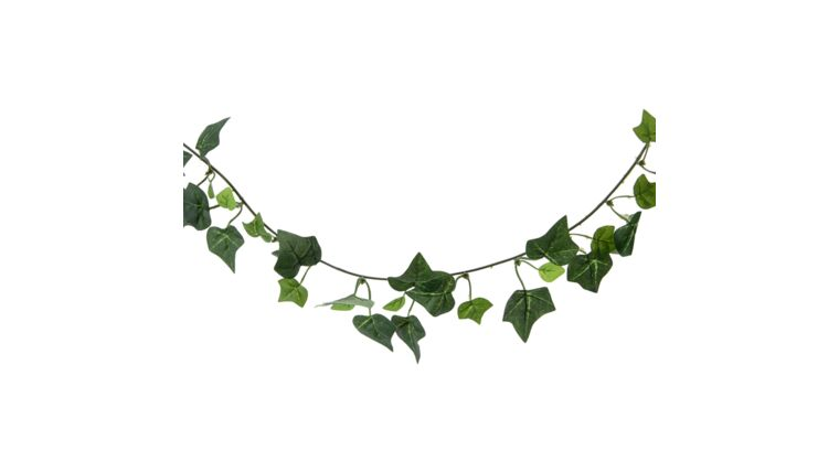 Picture of a Ivy Garland