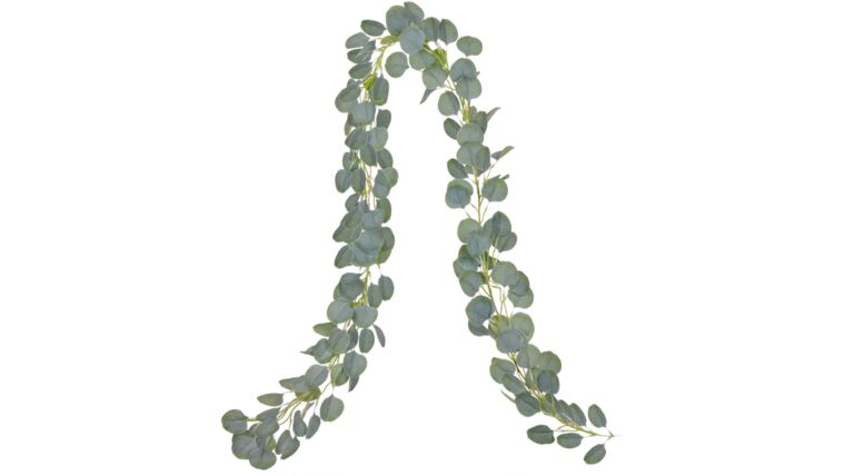 Picture of a Single Eucalyptus Garland