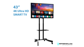 Image of a 43' Tv on a stand