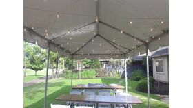 Image of a String Lighting - 50 ft