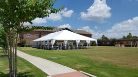 Image of a Frame Tent - 40x100