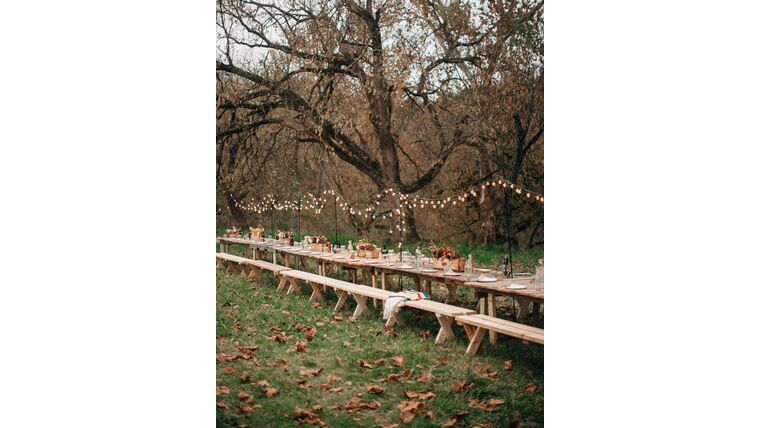 Picture of a Backyard Wedding Package