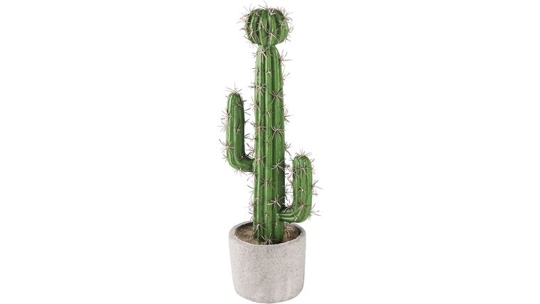 "Picture of a 13"" Saguaro Cactus Artificial"