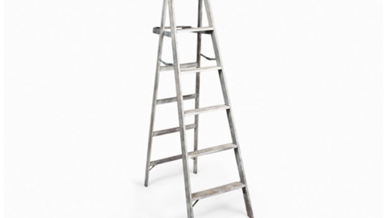 Picture of a Ladder, Emmett