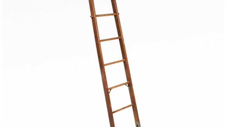 Picture of a Ladder, Jacob
