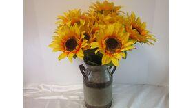 "Image of a ""Sunflower Bush"" long stem"