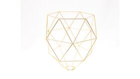 Image of a Geo Cage - Gold